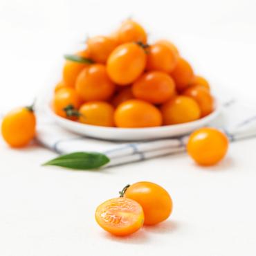 黄樱桃番茄